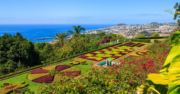 Flights from London to Funchal