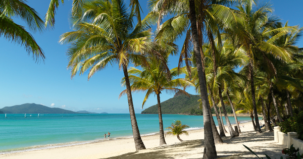 Flights from Brisbane - International to Hamilton Island