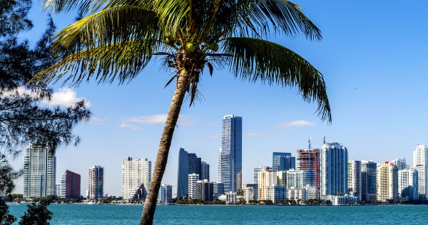 Flights from New York City - John F. Kennedy to Miami - International