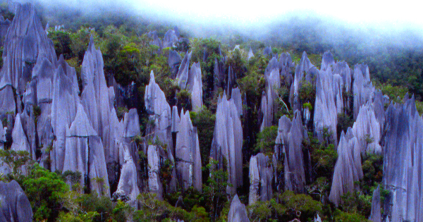 Flights from Mulu
