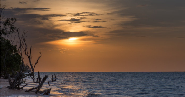 Vols Fortaleza - Paramaribo