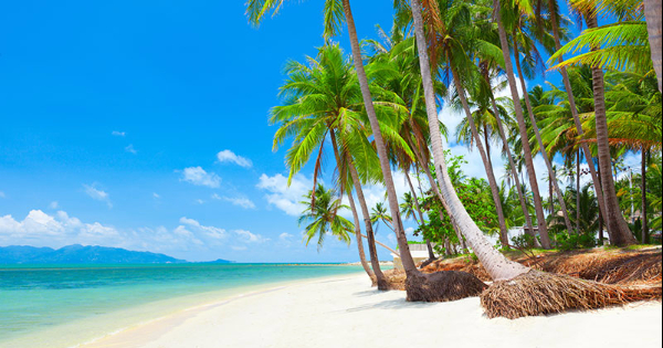 Flights from Toronto to Ko Samui - Koh Samui